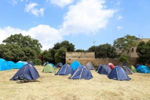 Campo Volpe Astuta