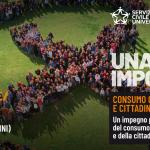 SCU_1426x626_copesito